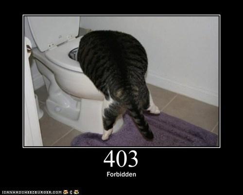 status code 413
